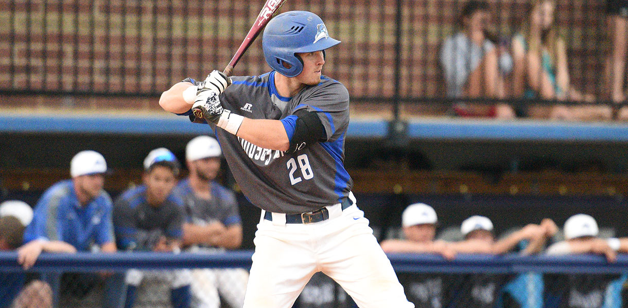 Photo for Six Blue Raiders earn MSC Baseball All-Conference accolades